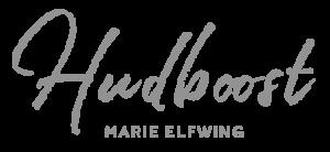 Logotype - Hudboost